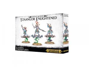 Warhammer Age of Sigmar: Disciples of Tzeentch - Tzaangor Enlightened