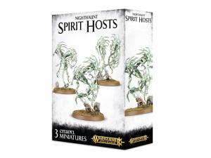 Warhammer Age of Sigmar: Nighthaunt - Spirit Hosts